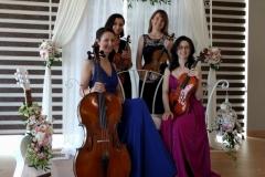 Cantabile-Quartet-Cluj-Sun-Garden-Nunta